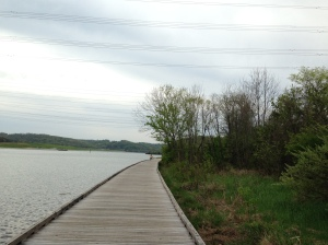 The new boardwalk that connects the Melton Lake segment to the Haw Ridge area